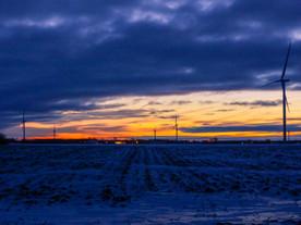 Windmills at First Light