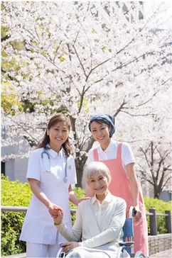 志木地域高齢者