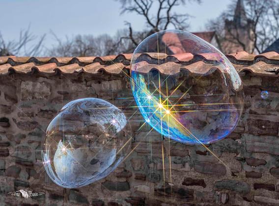 Bubblen_Klöster_Drübeck_250318-6926.jpg