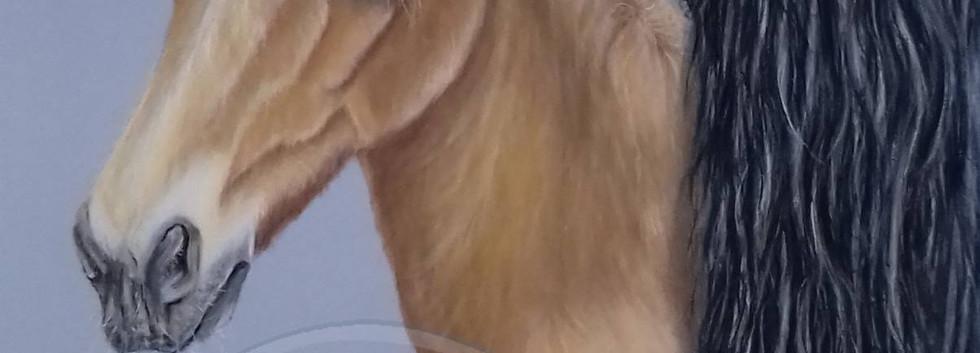 Brigitte Rapp 30x40.jpg