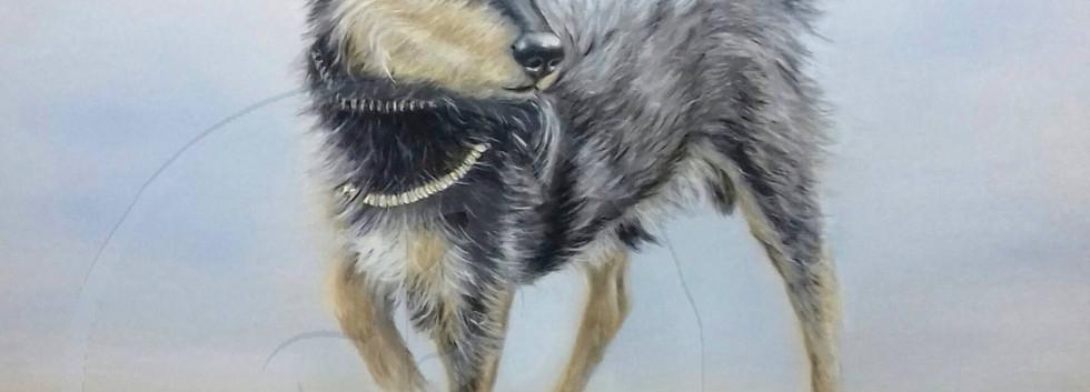 Brigitte Rapp, Hund