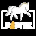 Logo FB profil - blanc.png