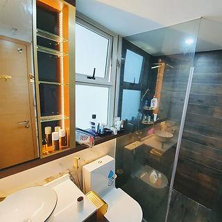 toilet bto2.jpg