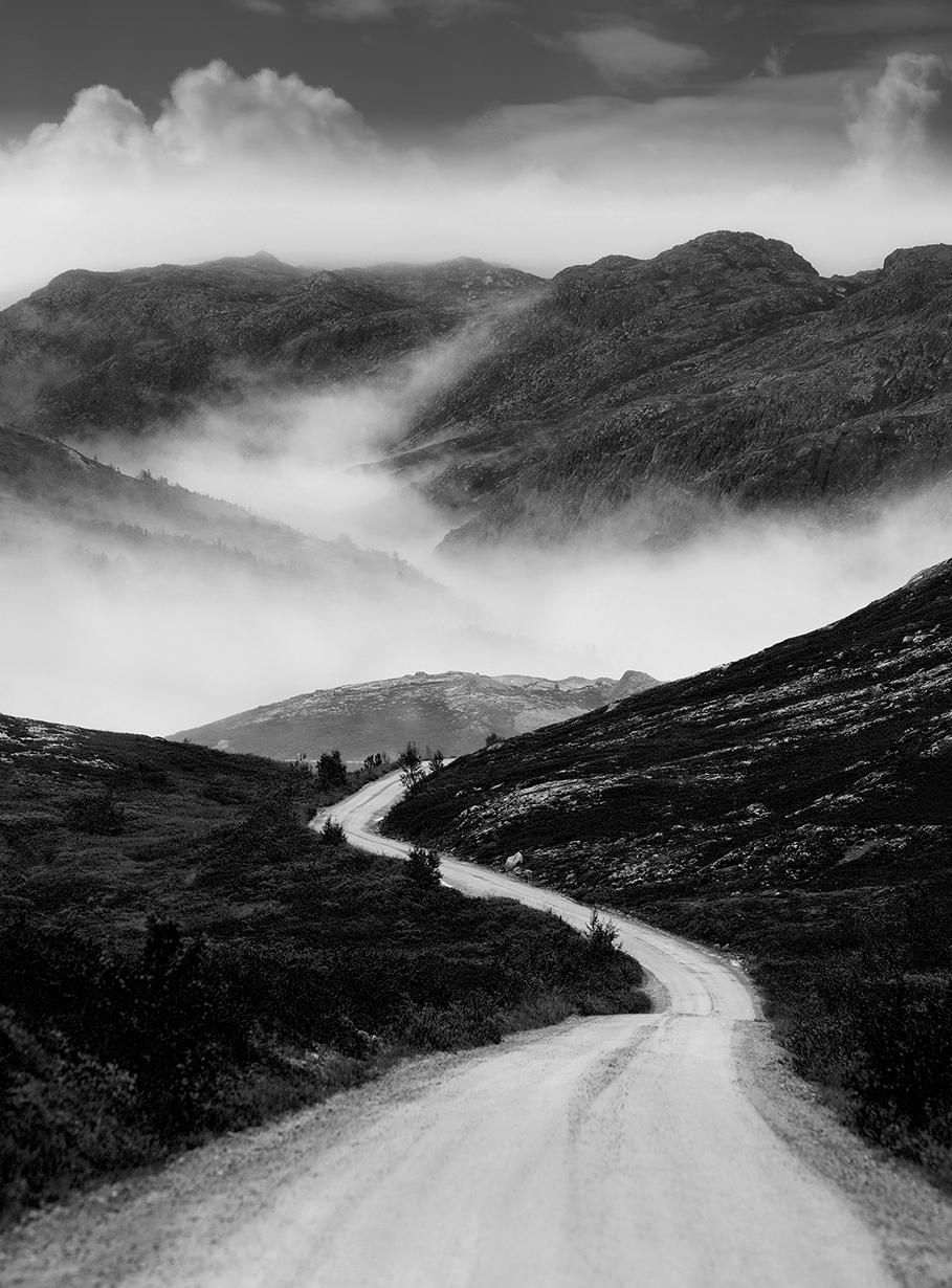 Fog Valley  # 137