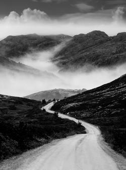Fog Valley  # 25