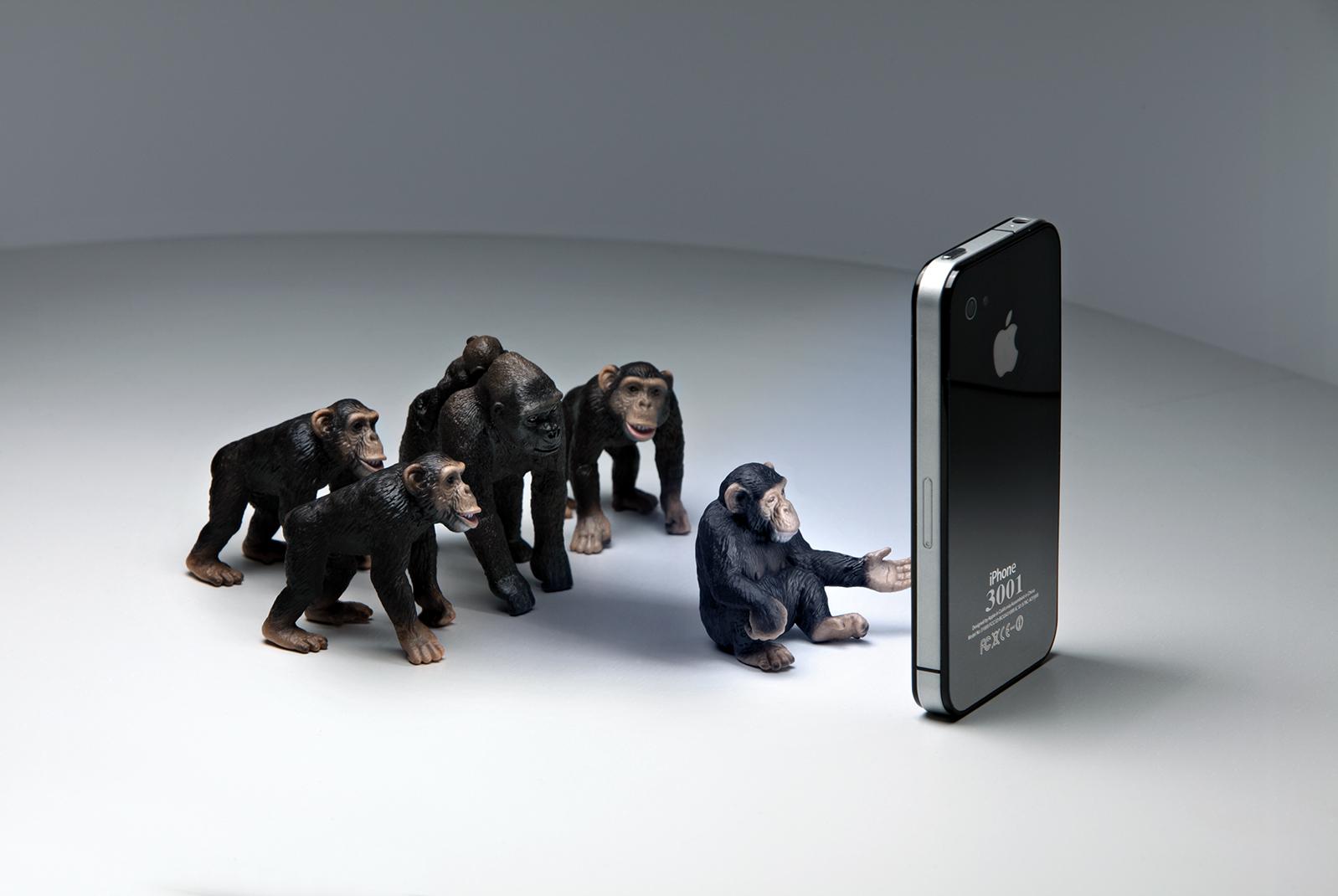 Monkey Phone # 60