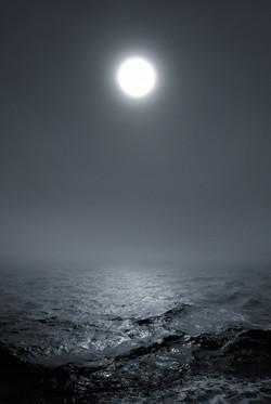 Waterworld Seascape # 26