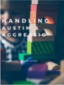 Handling austim & Aggression.png