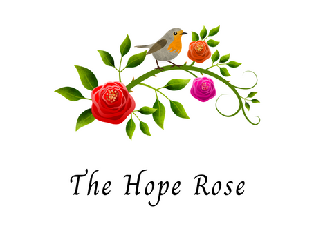 The Hope Rose and a Wondrous Old Rose Garden