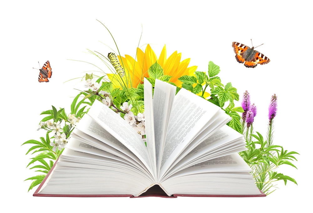 Books and Gardens