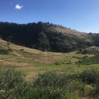Horsetooth Mountain Openspace