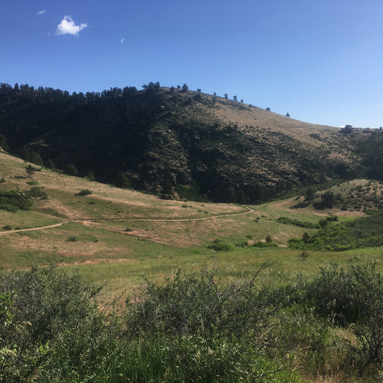 Horsetooth Mountain Openspace