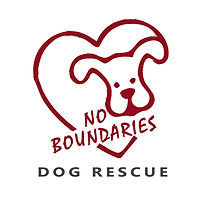 Final No Boundaries logo square (002).jp