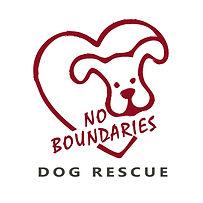 Final No Boundaries logo square (002).jp