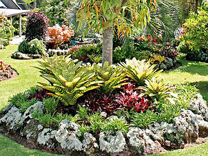 Elegant-Tropical-Landscape-Ideas.jpg