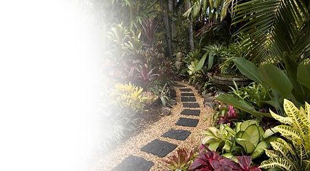 Fondo jardin steps.jpg