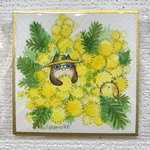 竹ノコ 作「畑の神様とミモザ」