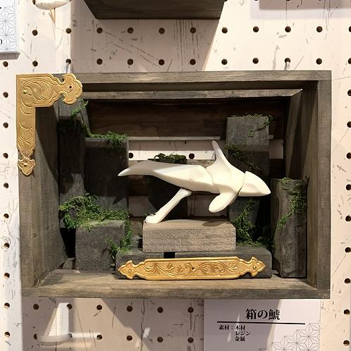 クレイマン 作「箱の鯱」
