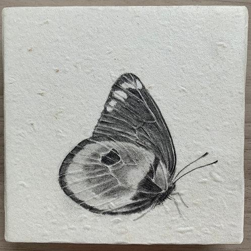 櫻田馨子 作「カザリシロチョウたちは人の魂を運ぶ No.02」