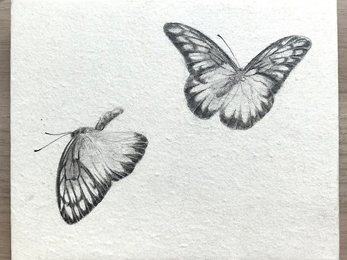櫻田馨子 作「カザリシロチョウたちは人の魂を運ぶ No.03」