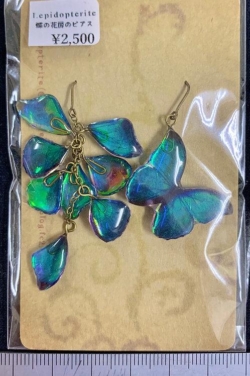 Lepidpterite/蝶の花房ピアス(モルフォ)