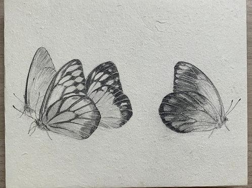櫻田馨子 作「カザリシロチョウたちは人の魂を運ぶ No.01」