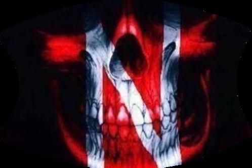Huskers Red Skull
