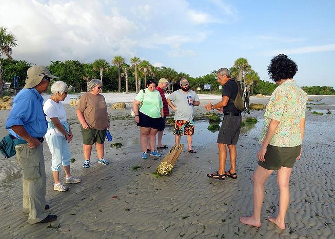 Dr. José H. Leal guides a beach walk for Bailey-Matthews National Shell Museum on Sanibel Island, Florida
