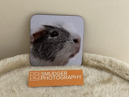 1 x Coaster - GUINEA PIG