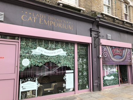 High tea with Lady Dinah's Cat Emporium in honour of International Cat Care 60th Birthday