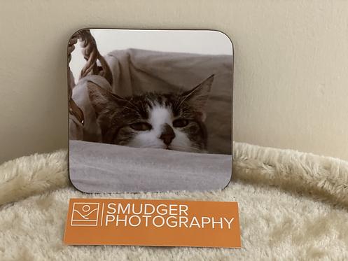 1 x Coaster - CAT IN BASKET