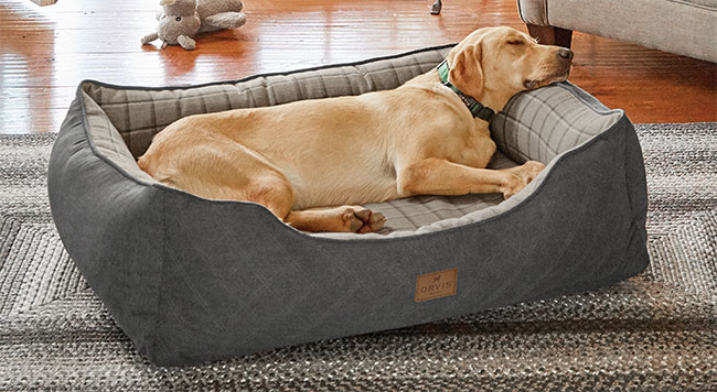 Orvis_Memory_Foam_2-in1_Dog_Bed,_from_£229,_Charcoal