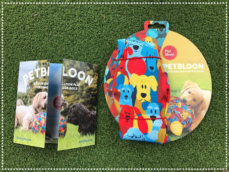 PetBloon - New Product Review