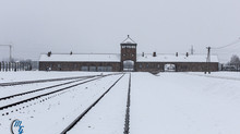 Visiting Auschwitz - Part III - Birkenau