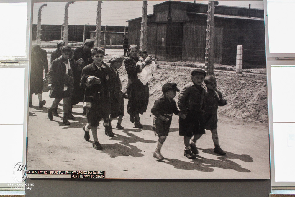 Heading to the gas chambers