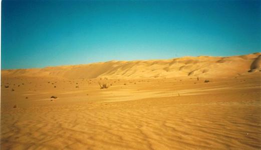 paysage de dunes.jpg