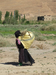 Maroc Mai 2016 284.jpg