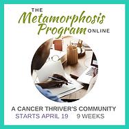 Metamorphosis Program.png