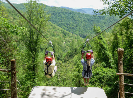 Top 5 Ziplines in Asheville-A Local's Perspective