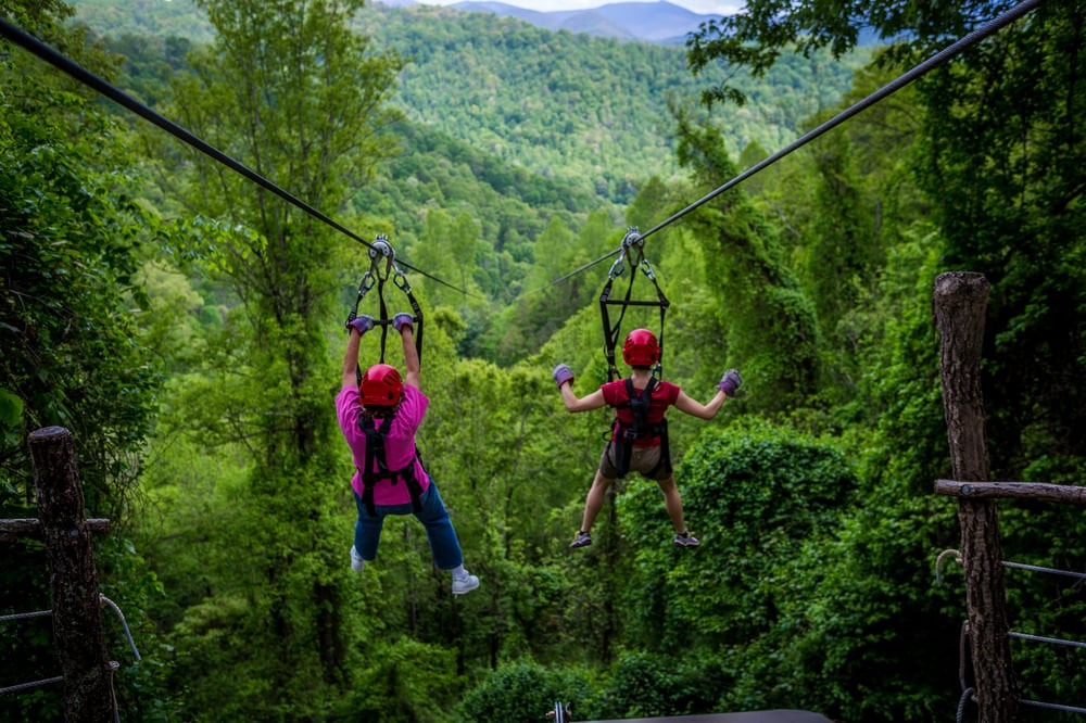 Navitat Canopy Adventures-a 30 minute drove from our Asheville Airbnb
