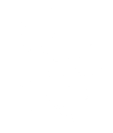 flower 45%-01.png