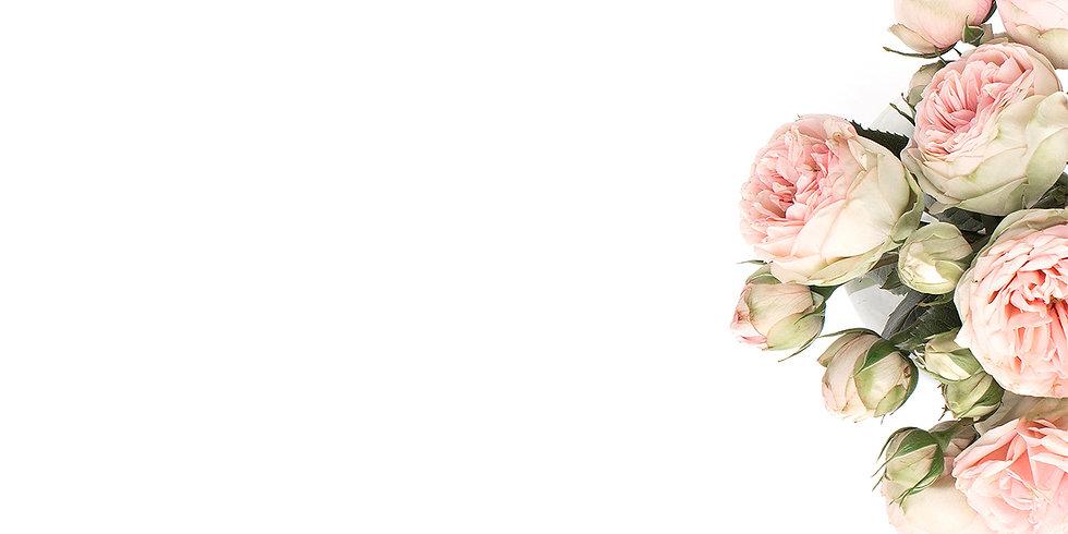 Le-Petite-Garden-Cover-Image copy.jpg