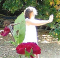 Cours et stages Qi Gong
