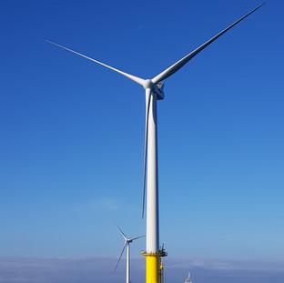 Wind farm array