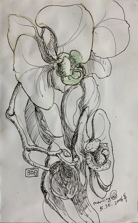 蘭花系列4