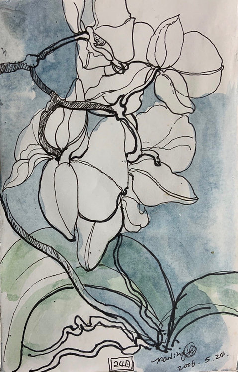 Orchid Series 1