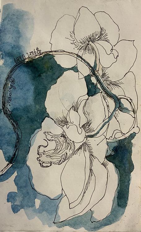 蘭花系列10