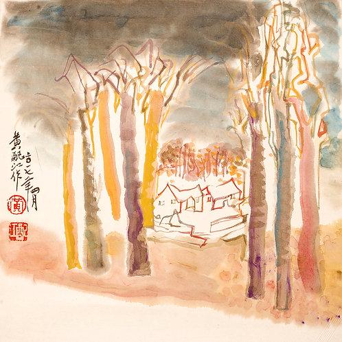 樹木系列1