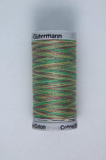4041 Gutermann Cotton 30 Variegated