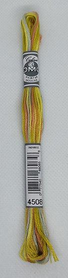 4508 DMC Coloris